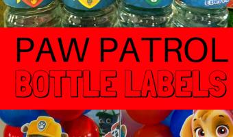 FREE Paw Patrol Water Bottle Labels